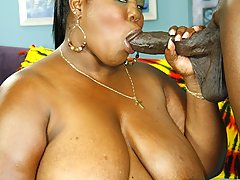 Gallery of Black Mature Videos